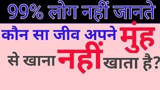 Top ten interesting questions answers in hindi. दस मजेदार सवाल जवाब।