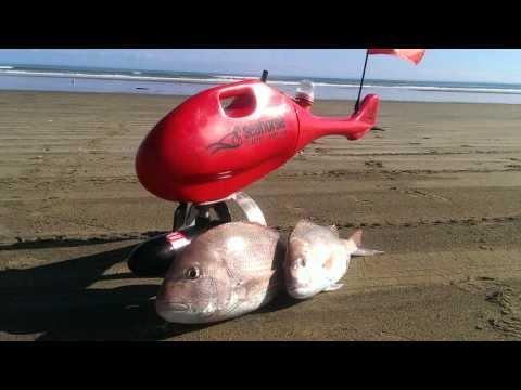 Seahhorse Surfcasting video - Australia