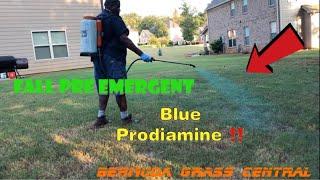 How to apply your Fall Prodiamine application, plus Prodiamine 65 WDG