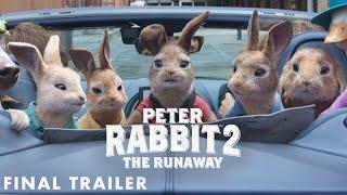 PETER RABBIT 2: THE RUNAWAY Movie Trailer Video HD