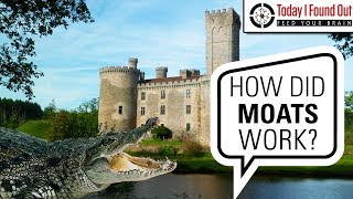 Did People Ever Really Put Crocodiles in Moats?