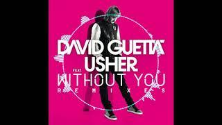 David Guetta-Without You Feat  Usher (R3hab Remix) DJ Baek Mashup