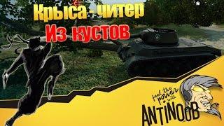 Крыса-читер из кустов World of Tanks (wot)