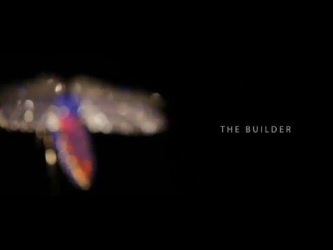 The Jeweled Garden - Metallic Beetle