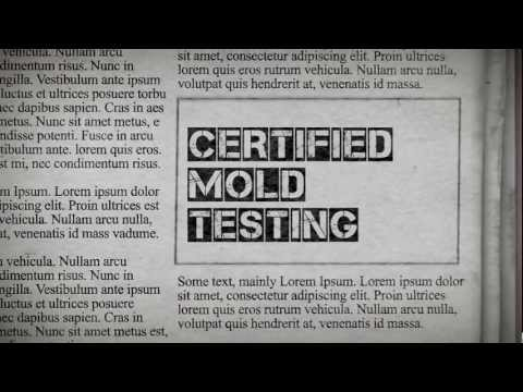 Mold and Mildew Remediation Company