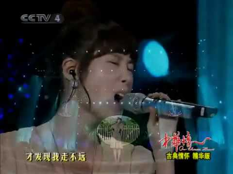 2009.11.17 CCTV Ad Recruiting Festival - Zhang Li Yin - Moving On