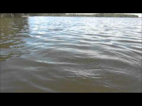 Рыбалка на щук на севере Канады. Саскачеван.