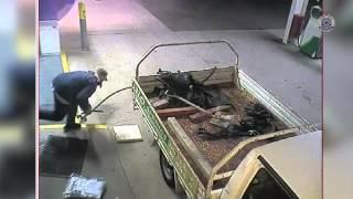 Pokušao je da ukrade bankomat, ali mu se na kraju cijeli svijet smijao (VIDEO)