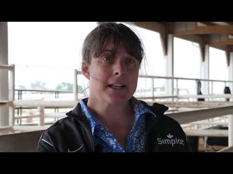 The Value of the U.S. Beef Industry Sustainability Framework