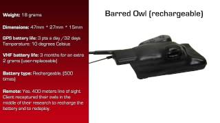 Watch video - GPS Data Logger for Barred Owl with rechargeable battery