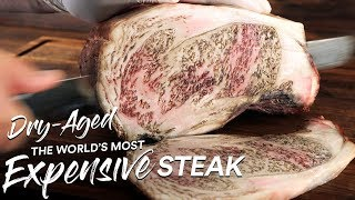 1 Million Special: DRY AGE Most EXPENSIVE Steak on Earth | Guga Foods