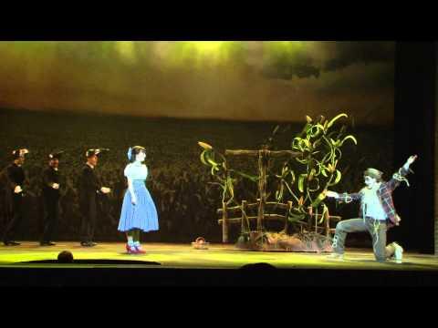 Baixar André Torquato é o Espantalho no Mágico de Oz