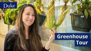 Duke Greenhouse Virtual Tour video
