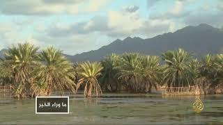 الإمارات.. شهية مفتوحة لتوسيع النفوذ في اليمن     -