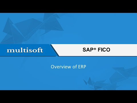 Overview of ERP in SAP FICO Training