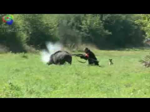 Napad divlje svinje na lovca