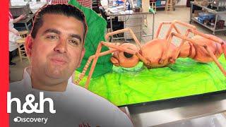 Buddy sorprende con este pastel de hormiga gigante | Cake Boss | Discovery H&H