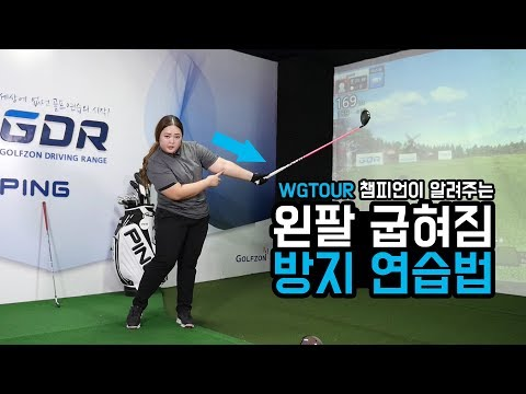 팔로우시 왼팔 접힘 방지! 뿌리기, 던지기! WGTOUR 챔피언이 알려주는 골프레슨!
