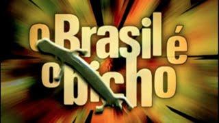 O Brasil é o Bicho! | Dener Giovanini