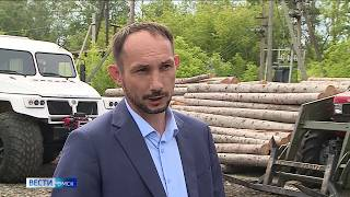 Запрет на посещение лесов в Омской области будет действовать еще минимум две недели