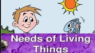 Needs of Living Things Animation Kindergarten Prescoolers Kids