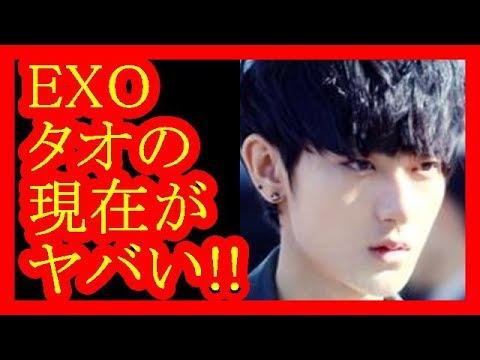 【EXO】タオの現在のプロフィールを紹介!パンダが大好きな理由とは【だみんちゃんねる】