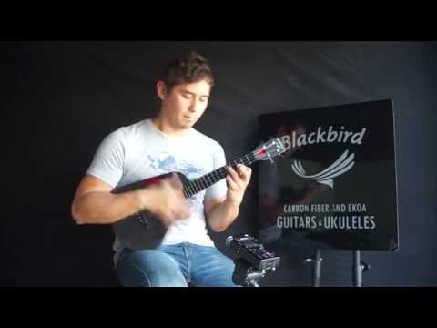 Beacon - John Nash - Blackbird Session - Tenor Ukulele
