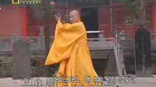 True Power of Shaolin Kung Fu