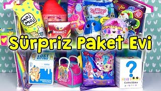 Jojo Siwa Lost Kitties Fingerlings - Zep'in Oyuncakları