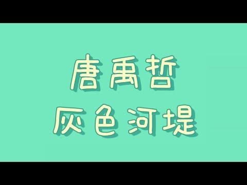 唐禹哲 - 灰色河堤【歌詞】