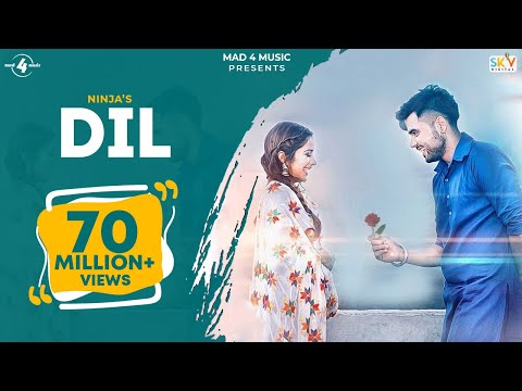 Dil - Ninja - Valentines Special - Latest Punjabi Song