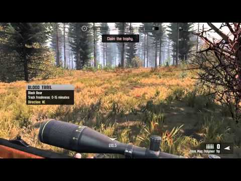 Baixar Cabela's Big Game Hunter PRO HUNTS - Northeast gameplay - Bear