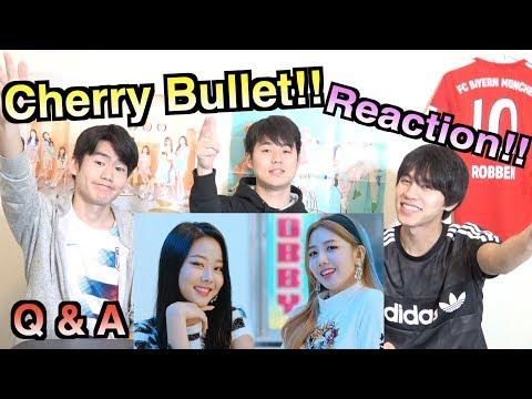 【체리블렛~Q&A~】일본인이 한국어로 하는 K팝 리액션!!