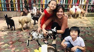 Stin Dâu Thăm Trang Trại Nuôi Dê & Cừu (^_^) Stin Dâu Đi Khu Vui Chơi
