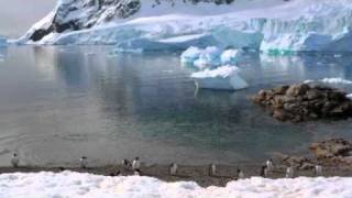 Cruise to the Antarctic
