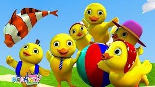 Six Little Ducks Nursery Rhyme for Kids | Kids Cartoon | by Kachy TV