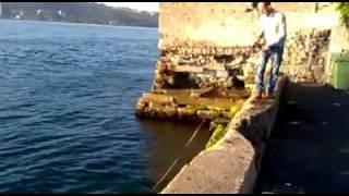 Mehmet Çebi'den Balık Show