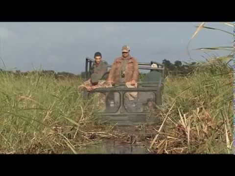 Hunting in Mozambique Africa