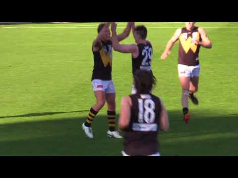 Round 9 highlights: Box Hill Hawks vs Werribee