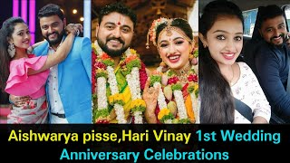 Serial actress Aishwarya Pisse, Hari Vinay 1st wedding ann..