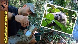 Dia de Café com Bacon | O que é o EFEITO DE BORDA? | O belo Macaco Parauacú