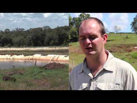 Construccion de estanque rustico tilapia musica movil for Como hacer un criadero de mojarras