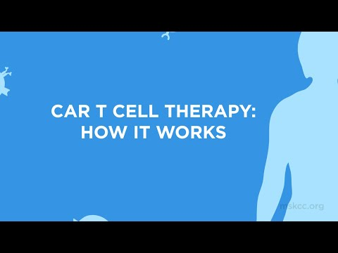 CAR T Cell Therapy: How It Works