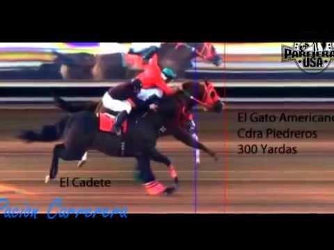 Carrera de El Cadete vs El Gato Americano 5 30 2015