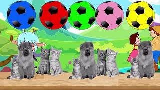 Learning Video for Toddlers Learn Colors With Cats and Dogs and Colored Ball Shower - jee jee tv