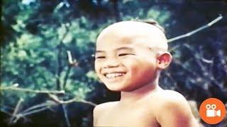 Phim Hài | Đến Thượng Đế Cũng Phải Cười Phiên Bản Việt Nam