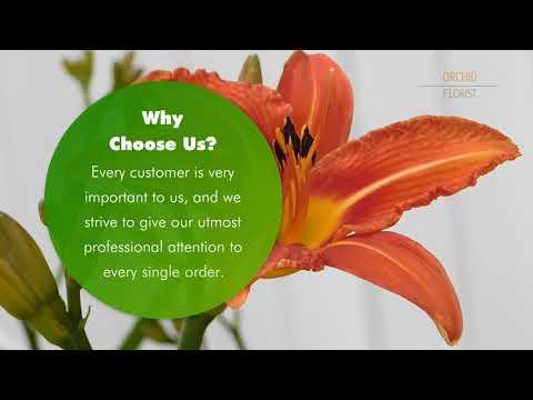 The Best Florist in Berkeley CA - Orchid Florist