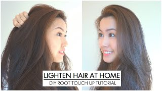 HOW TO ROOT TOUCH UP: Black to chestnut brown hair color (LOREAL B61)