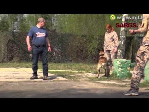 Speciālo uzdevumu vienības kinologs: Dienesta laikā suns ir kolēģis 2. daļa