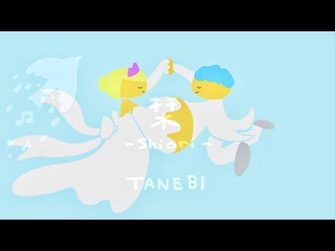 TANEBI − 栞 −